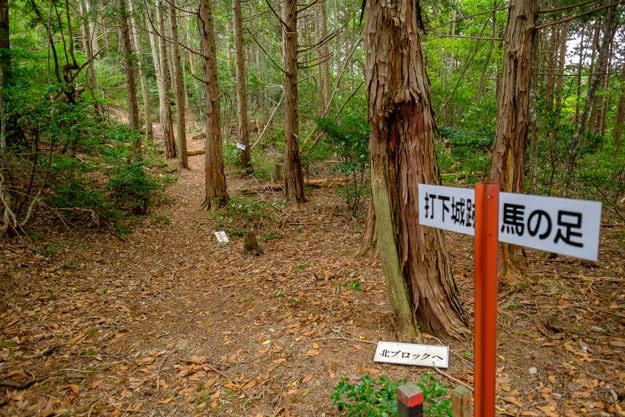 uchioroshi-7498