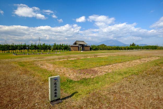 shiwajo-8392