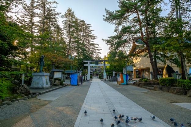yonezawa-9081s