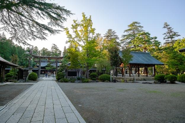 yonezawa-9087s