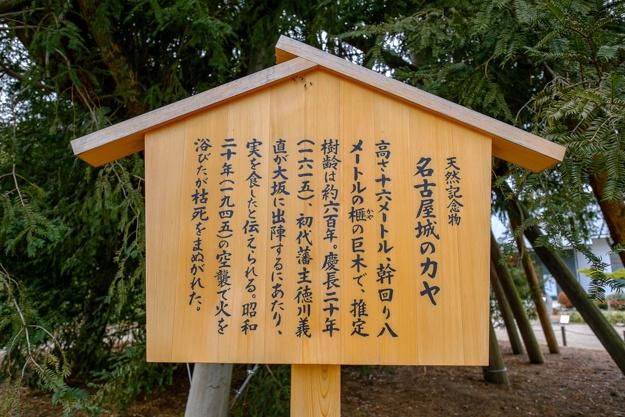 nagoya-7559