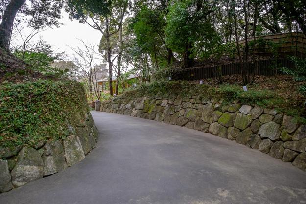 nagoya-7658