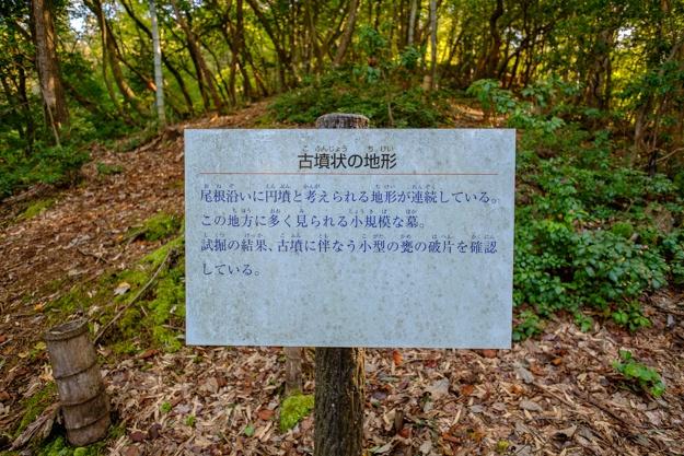 konosumi-0340