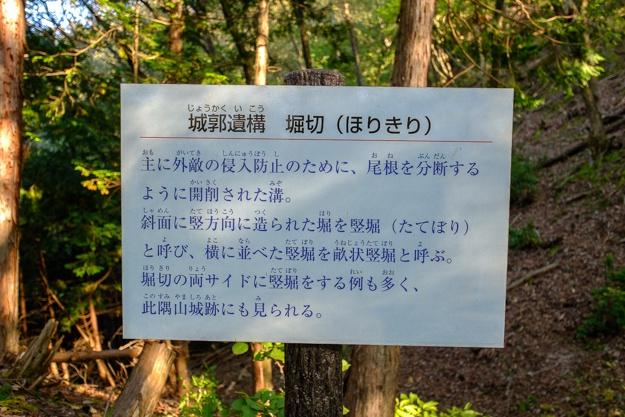konosumi-0356