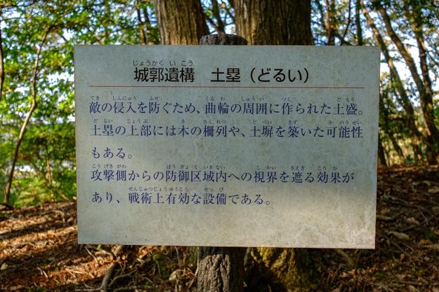 konosumi-0359