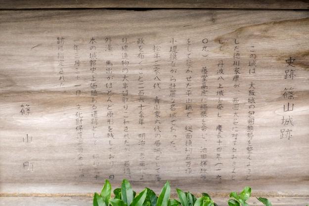 sasayama_s-0115d-0114