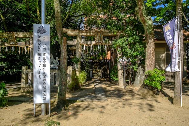 tamatsukuri-9964