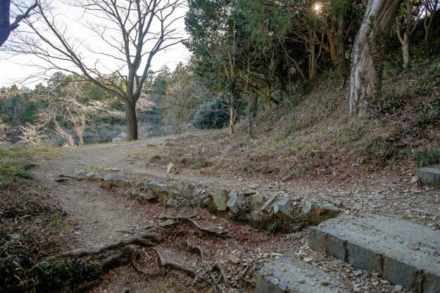 hachioji-1525