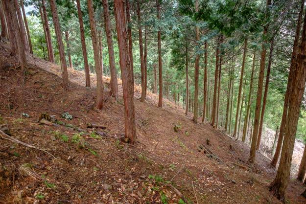 kamaha-1988