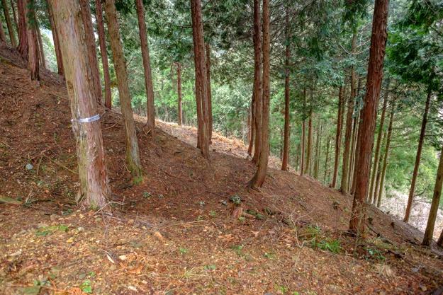 kamaha-2006