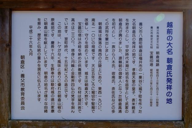 asakura_jo-2492