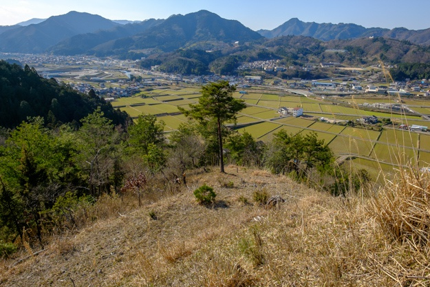 asakura_jo-2512