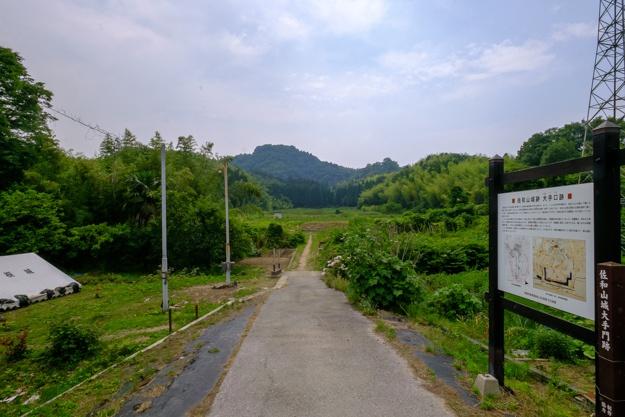 sawayama3-7549