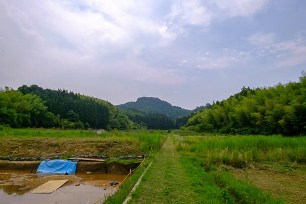sawayama3-7553