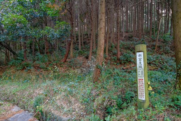 shingu_koka-3548
