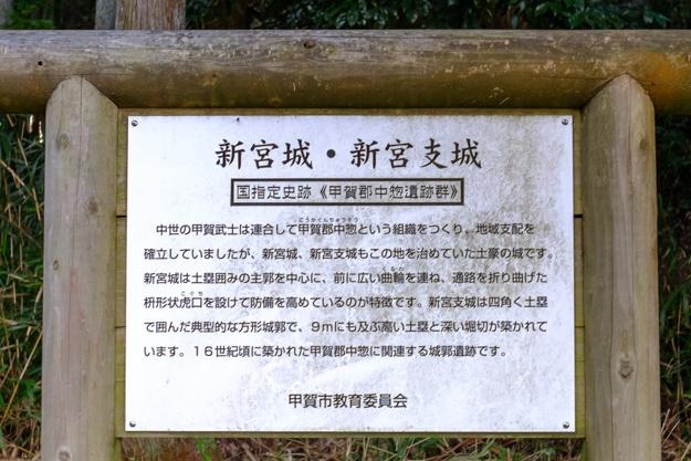 shingu_koka-3574