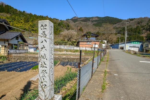 tajima_yagi-2249a-2263
