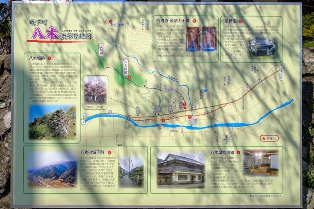 tajima_yagi-2254