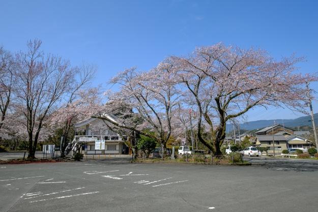 nagashino-2627