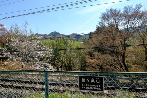 nagashino-2685