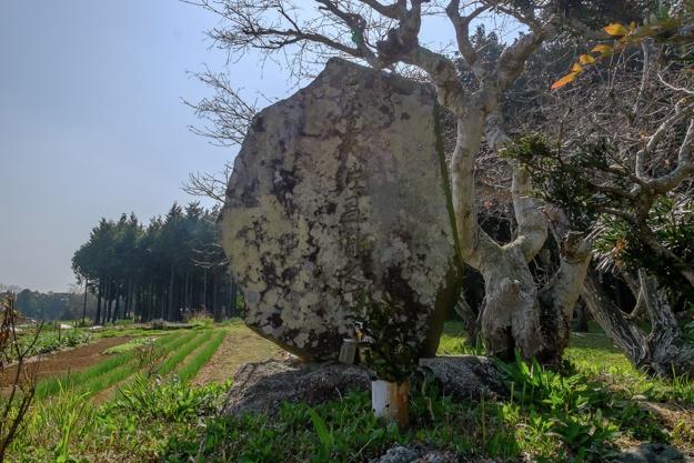 shitaragahara-2870
