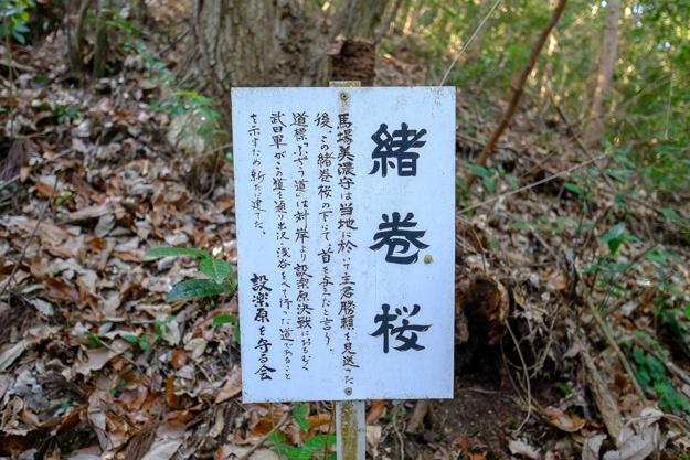 shitaragahara-2911