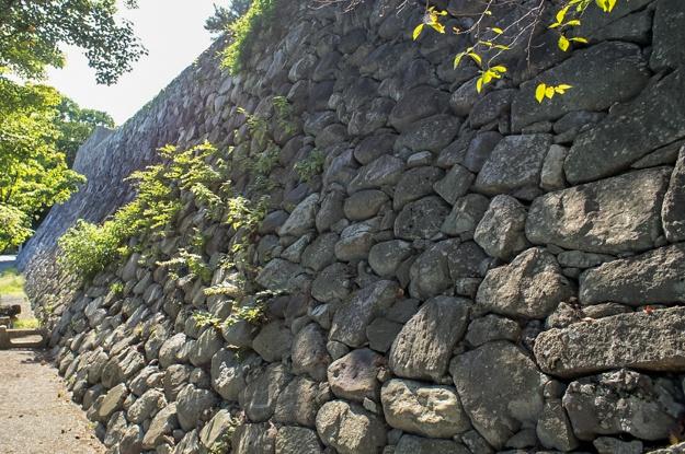matsusaka2-58