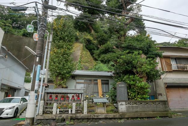 tamanawa-5376