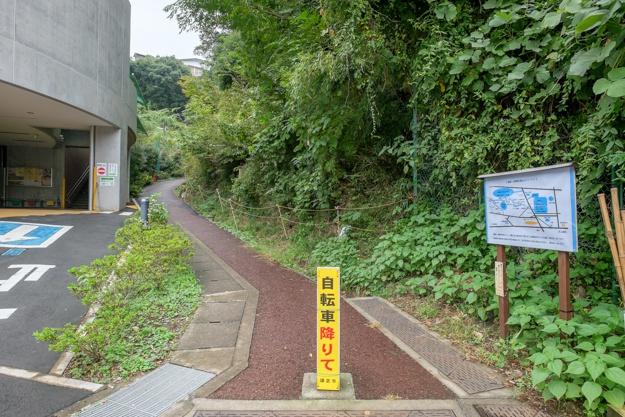 tamanawa-5433