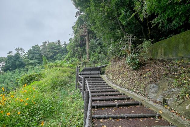 tamanawa-5447