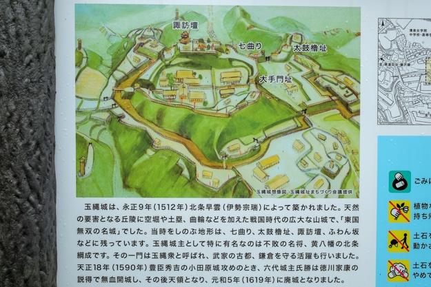 tamanawa-5456