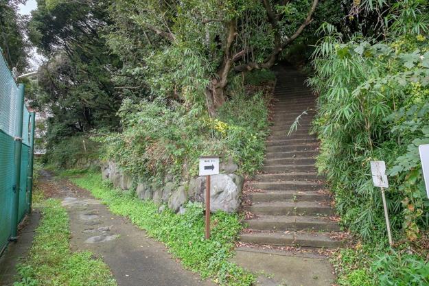 tamanawa-5526