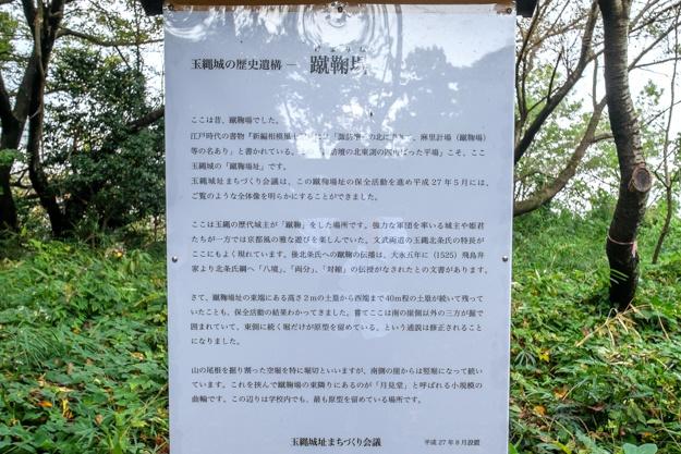 tamanawa-5598a-5595
