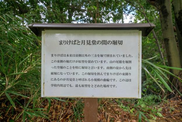 tamanawa-5606
