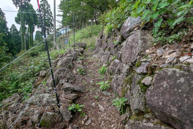 wakasa-onigajo-0652