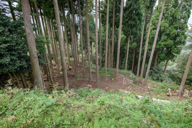 wakasa-onigajo-0719