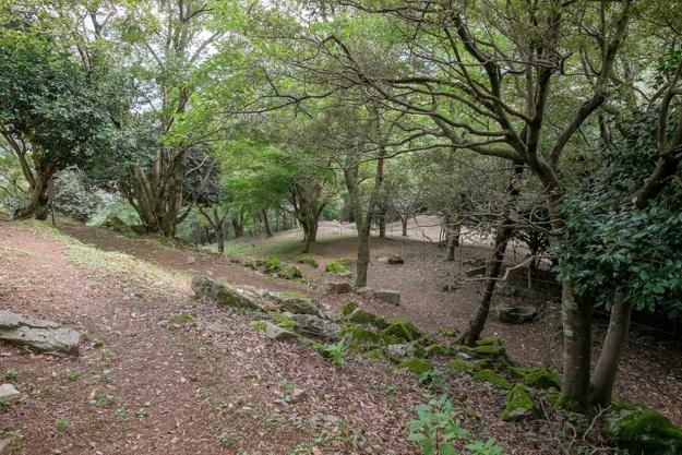 wakasa-onigajo-0778