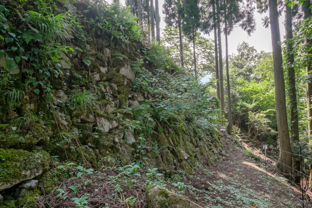 wakasa-onigajo-0823