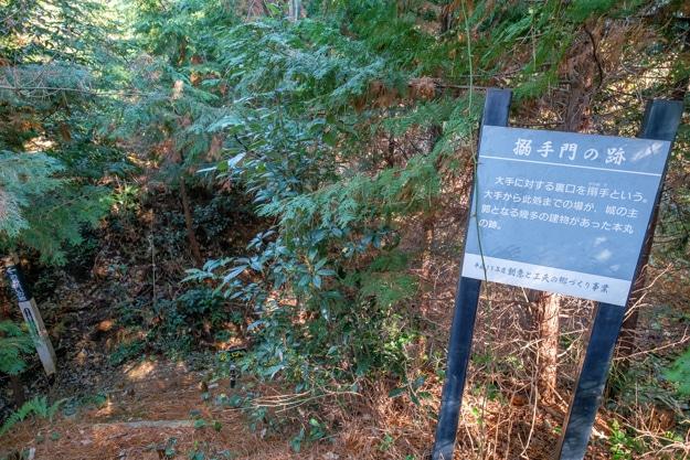 hinosakura-4910b-4914
