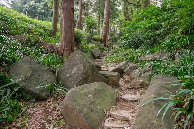 ishigakiyama-5141