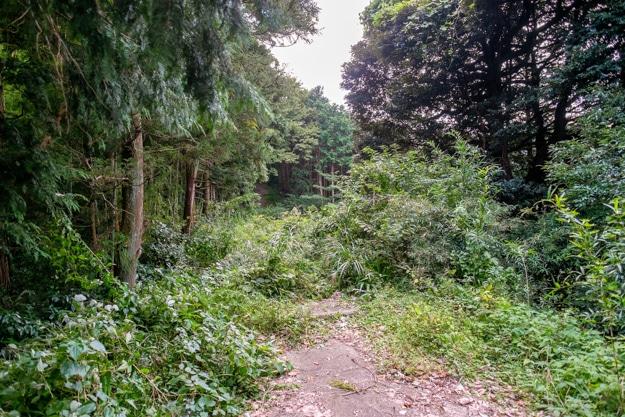 ishigakiyama-5191