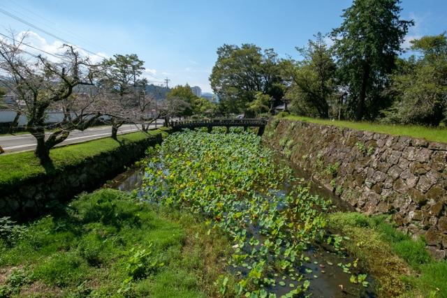 hitoyoshi-3735