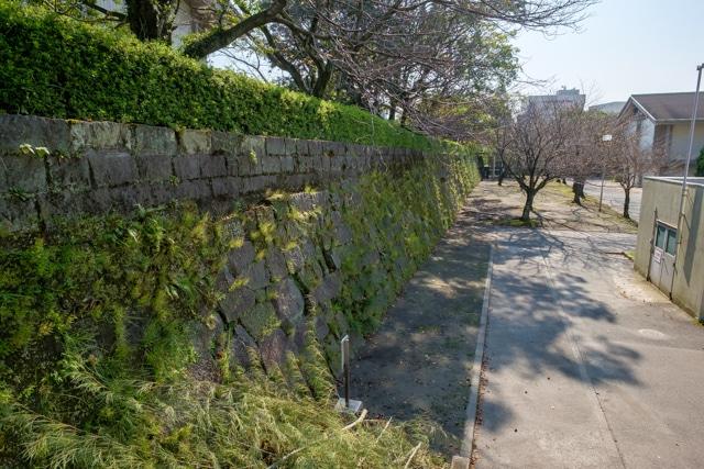 kagoshima-3958