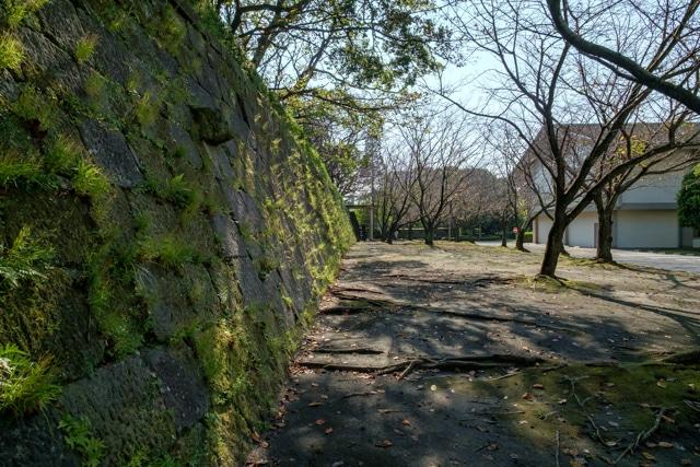 kagoshima-3961