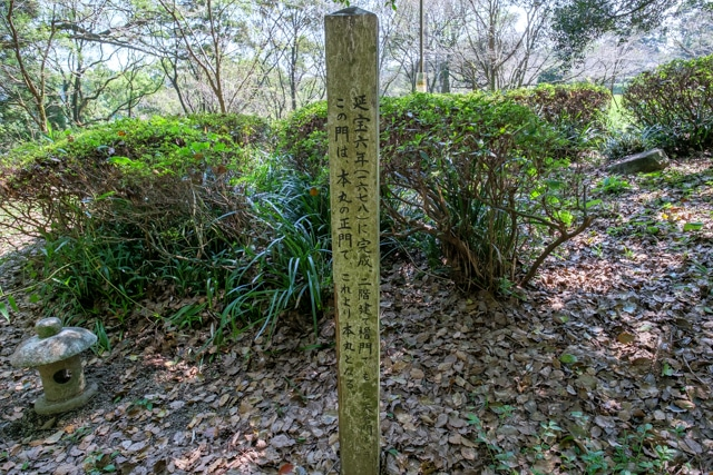 takanabe-3193