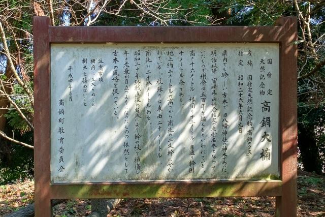takanabe-3253a-3251