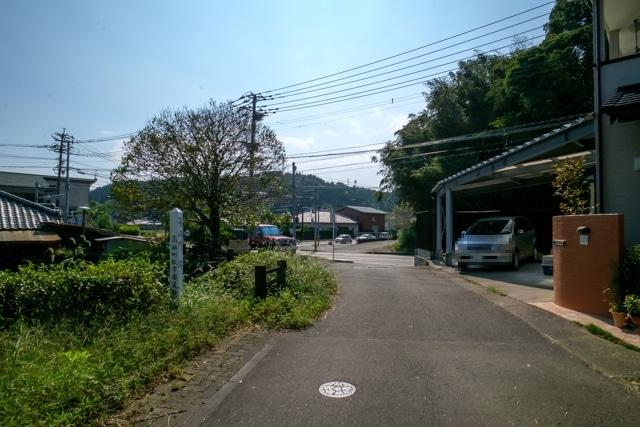 takanabe-3282s