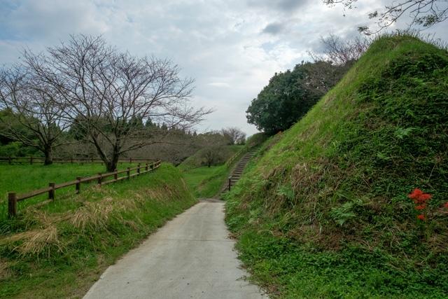 tonokoori-3336