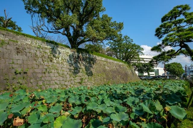 kagoshima-4037a-4034