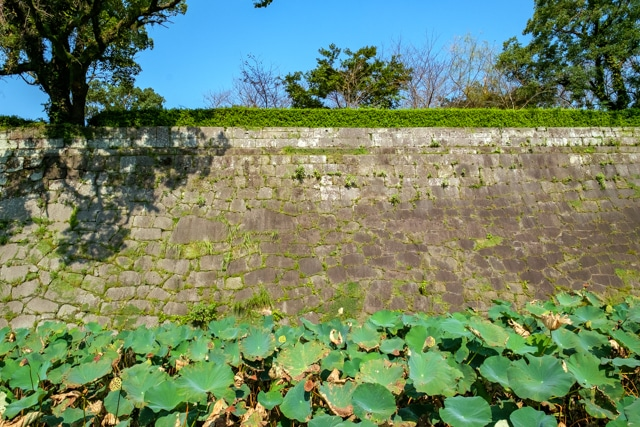 kagoshima-4038